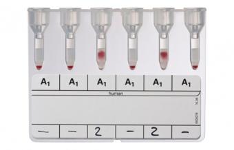 Подгруппы антигена A
