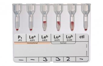 Антигенные профили эритроцитов