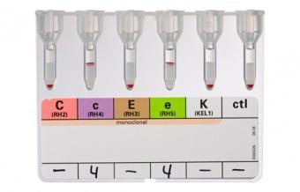 Фенотипирование эритроцитов системы Rhesus